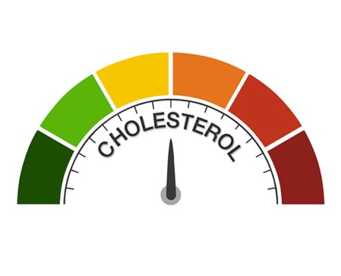 Colesterolo-sotto-controllo
